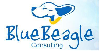 Blue Beagle Consulting