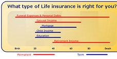 Life Insurance*