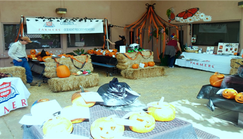 Don Nelms - <pre>Get ready! Wildcat Carnival W. Sedona School Pumpkin Carving Contest! Oct 26TH</pre>