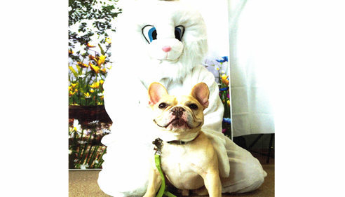Jennifer Gregorski - <pre>Took and the Easter Bunny</pre>