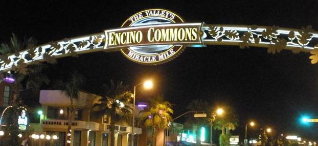 Buying Insurance in Encino
